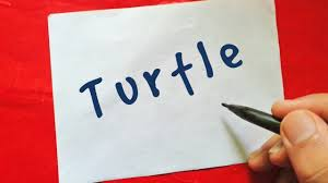 very easy how to turn words turtle into a cartoon turtle for