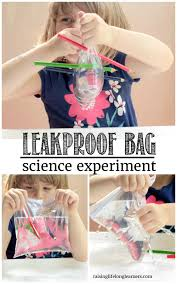 leak proof bag quick science experiment science for kids