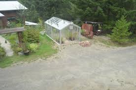 woodbrook native plant nursery landscape design my own personal jungle