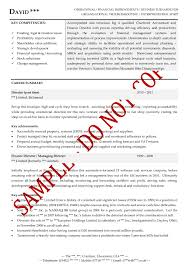 Sample Executive Summary Resume by Executive Cv Examples The Cv Store
