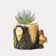 planter design picture more detailed picture about clay mushroom