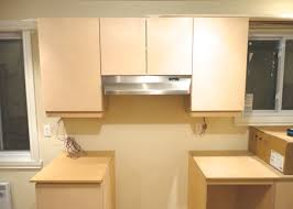 Yellow Kitchen Cabinets Kitchen Cabinets White Wonderful Kabinets Hzmeshow