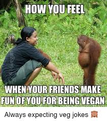 Memes To Make Fun Of Friends - how you feel when your friends make fun of you for being vegan