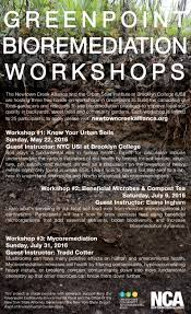 bioremediation workshops coming to greenpoint u2013 newtown creek alliance