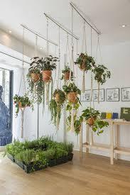 window planters indoor le nouveau coeur du marais plants gardens and planters