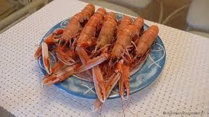 cuisiner les langoustines la cuisson des langoustines chez mon poissonnier