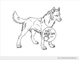 astounding wolf coloring sheets wallpapers awesome coloring