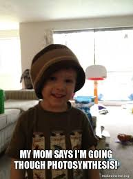 Scumbag Mom Meme - my mom says i m going though photosynthesis scumbag toddler