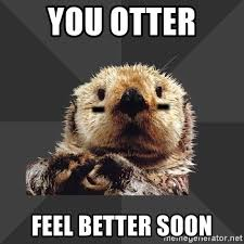 Feel Better Meme - you otter feel better meme jpg