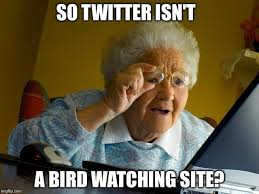 Internets Meme - grandma finds the internet meme so twitter isn t a bird watching