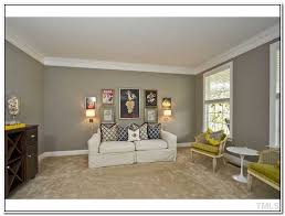 colors that go with tan 86 what paint colors go with tan carpet
