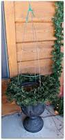 three mango seeds tomato cage christmas trees u0026 a front porch