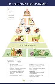 dr gundry u0027s new food pyramid for vitality