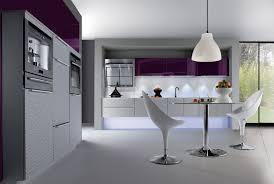 cuisine aubergine et gris cuisine aubergine et grise pas cher sur cuisine lareduc com