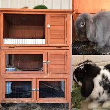 Flat Pack Rabbit Hutch Rabbit Hutch In Adelaide Region Sa Pets Gumtree Australia