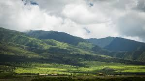 Pono Kai Resort Floor Plans by Honua Kai Hokulani 214 Hawaii Life Vacations