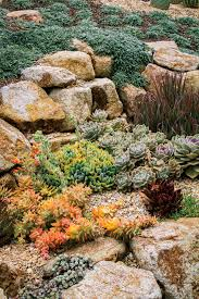 pacific horticulture society succulent gardens