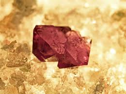 crystals how to grow ruby potassium alum crystals