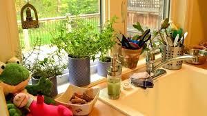 indoor herb garden kits to grow herbs indoors hgtv indoor kitchen garden indoor herb garden how to successfully grow