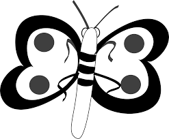 butterfly black and white butterfly clipart black and white free 2