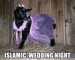 Purple Wedding Meme - islamic wedding night purple love meme generator