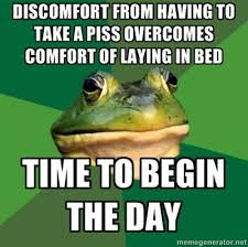 Bachelor Frog Memes - bachelor frog meme s way to start the day