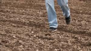s farm boots nz farmer in rubber boots walking on farm land planning seeding