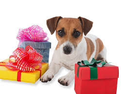 puppy with presents stock images image 25396144