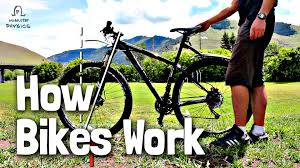 Biking Or Walking To Work by How Do Bikes Stay Up Youtube