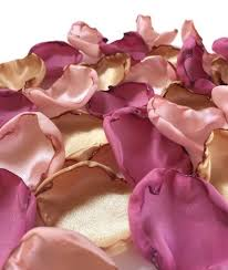 flower petals blush pink dusty pink and gold flower petals blush
