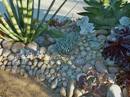 Rock Garden Succulents Rocks And Succulents Rock Garden Rock Gardens Pinterest