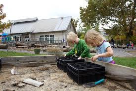 free picture young cute children play garden backyard