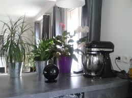 casanaute cuisine cuisine moderne photo 4 4 séparation avec le salon