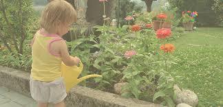 cura giardino orto e giardino malattie e insetti difesa e cura con nuovo