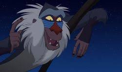 rafiki disney wiki fandom powered wikia