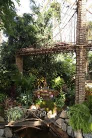 best 25 botanical garden new york ideas on pinterest nyc