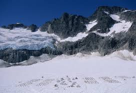 shore excursion dogsledding u0026 helicopter glacier flightseeing