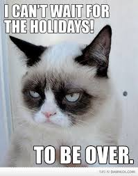 Angry Cat Meme - angry cat meme holiday cat best of the funny meme