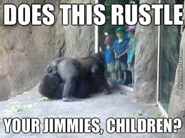 Gorilla Memes - have you ever seen a shaved gorilla by fudge packer meme center