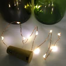 19 inch copper wire string light with warm white lights
