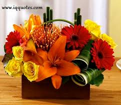 flowers for men flowers for men flower for men flowers images flowers for you