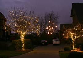 how to string lights on a tree charleston sc holiday outdoor lighting