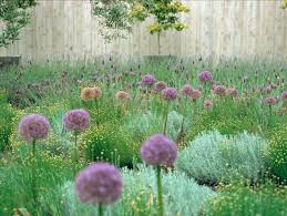 Easy Backyard Landscaping Ideas Inexpensive Landscaping Ideas To Beautify Your Yard Freshome Com