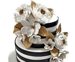 photo cakes cinderellacakes