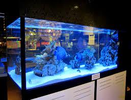 Fish Tank Reception Desk Comerical Aquarium