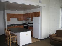 White Appliance Kitchen Ideas by Kitchen Endearing White Wall Paint Apartment Kitchen Design