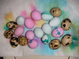 coloring quail eggs for easter florida hillbilly