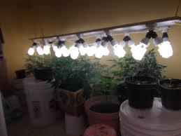 cfl grow light fixture nd generation cfl grow part 2 album on imgur