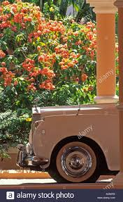 roll royce trinidad caribbean trinidad tobago rolls royce limousine parked in front of