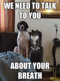 Funny Couples Memes - couple memes cute funny couple memes